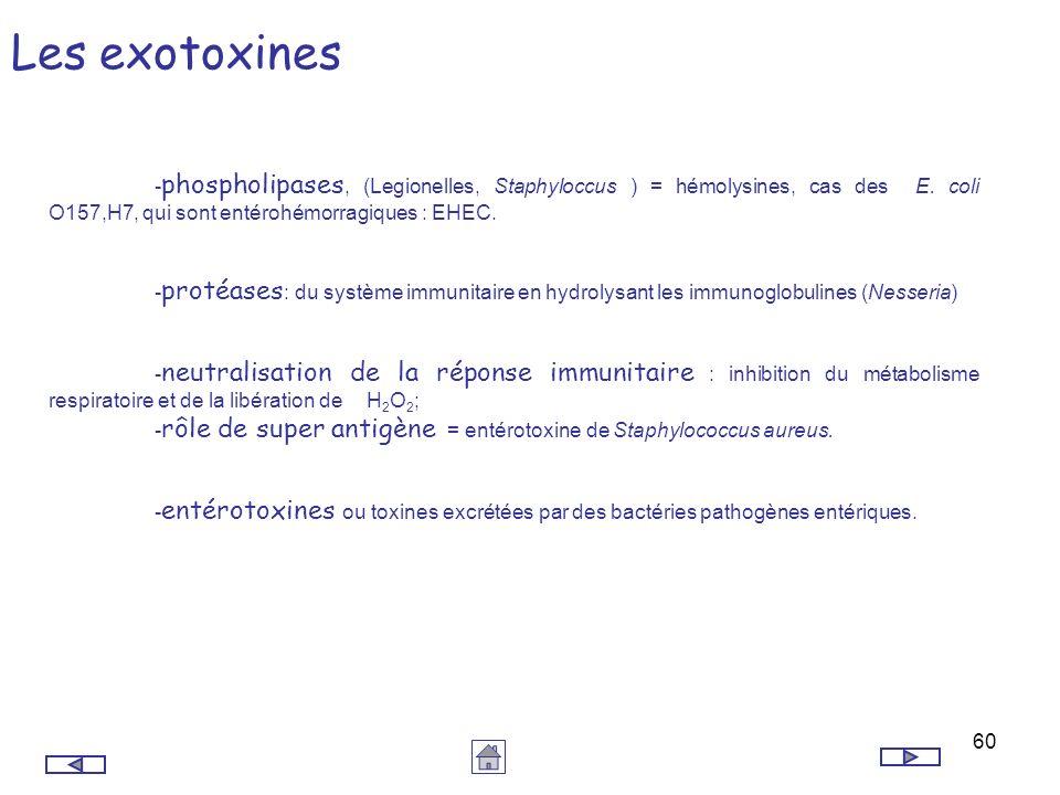 Les exotoxines -phospholipases, (Legionelles, Staphyloccus ) = hémolysines, cas des E. coli O157,H7, qui sont entérohémorragiques : EHEC.