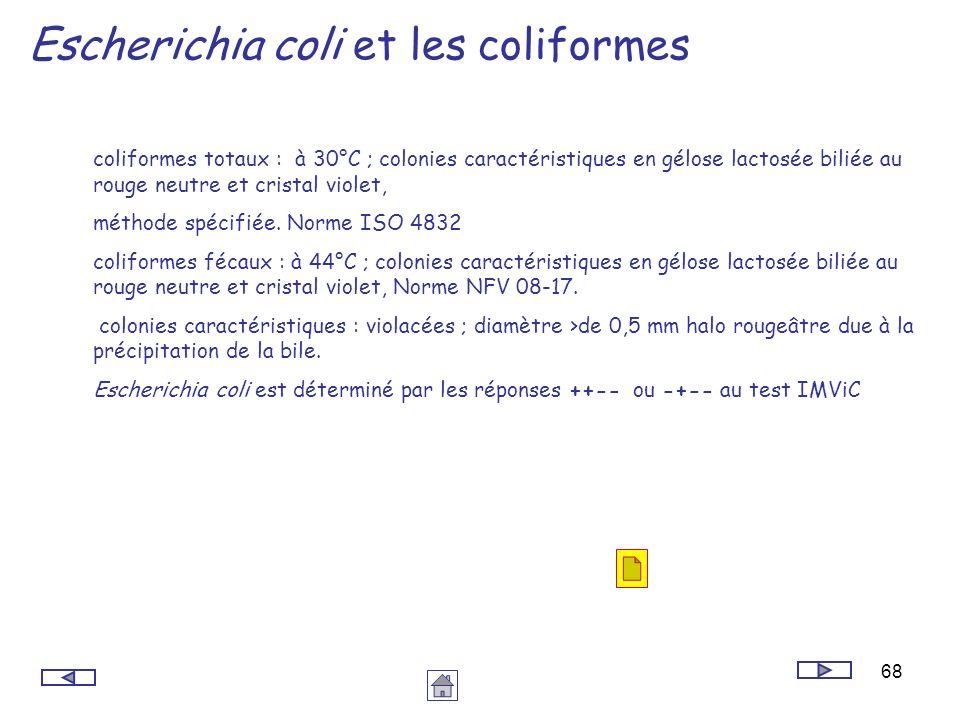 Escherichia coli et les coliformes