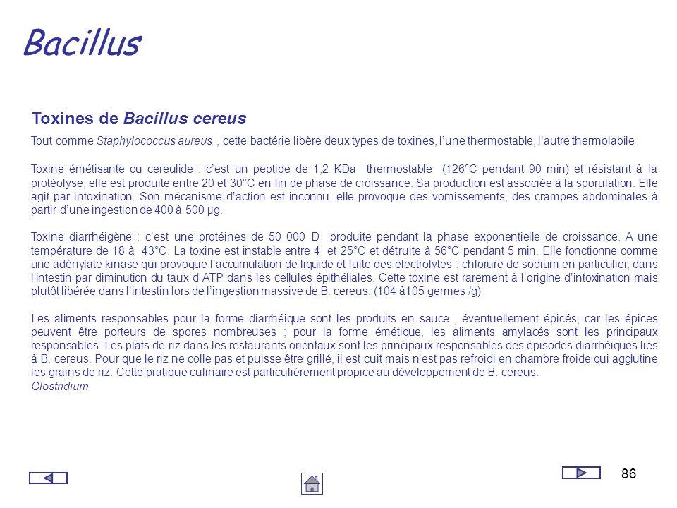 Bacillus Toxines de Bacillus cereus