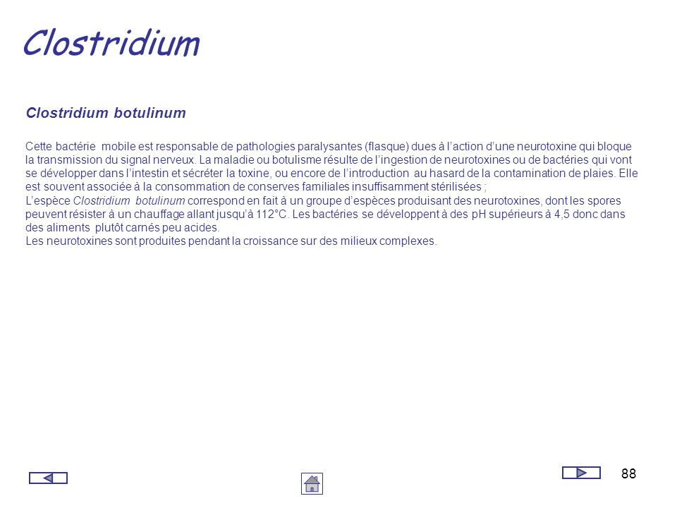 Clostridium Clostridium botulinum