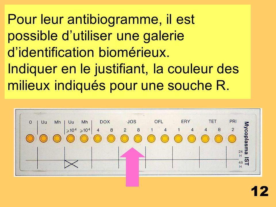 Pour leur antibiogramme, il est possible d'utiliser une galerie d'identification biomérieux.
