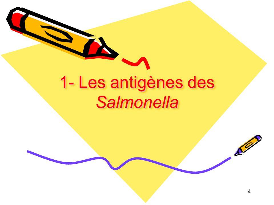 1- Les antigènes des Salmonella
