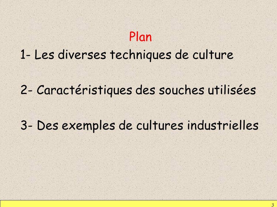 Plan 1- Les diverses techniques de culture 2- Caractéristiques des souches utilisées 3- Des exemples de cultures industrielles