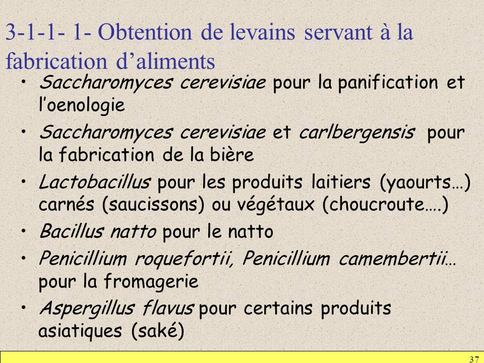 3-1-1- 1- Obtention de levains servant à la fabrication d'aliments