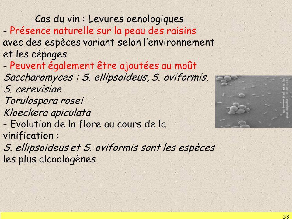 Cas du vin : Levures oenologiques