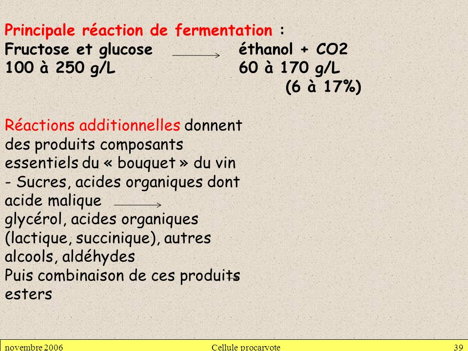 Principale réaction de fermentation :
