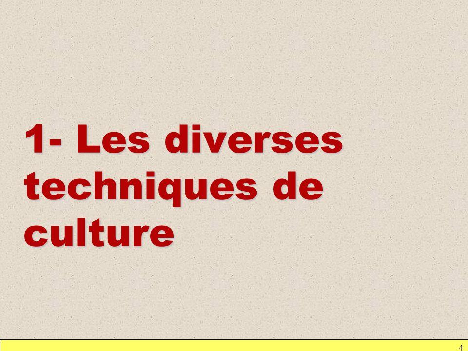 1- Les diverses techniques de culture