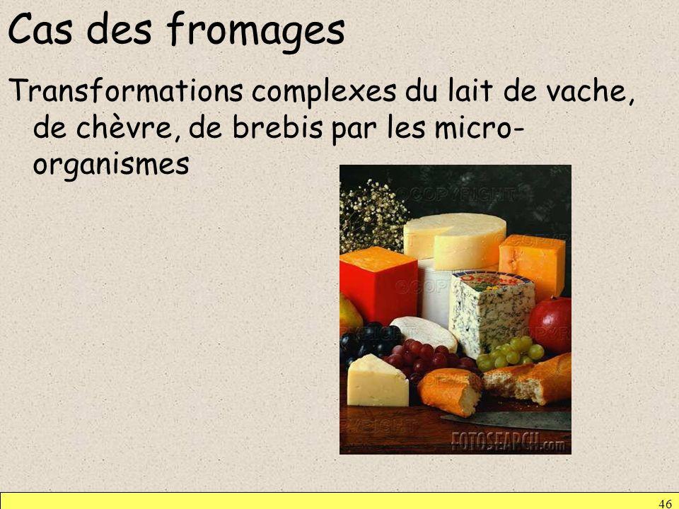 Cas des fromagesTransformations complexes du lait de vache, de chèvre, de brebis par les micro-organismes.