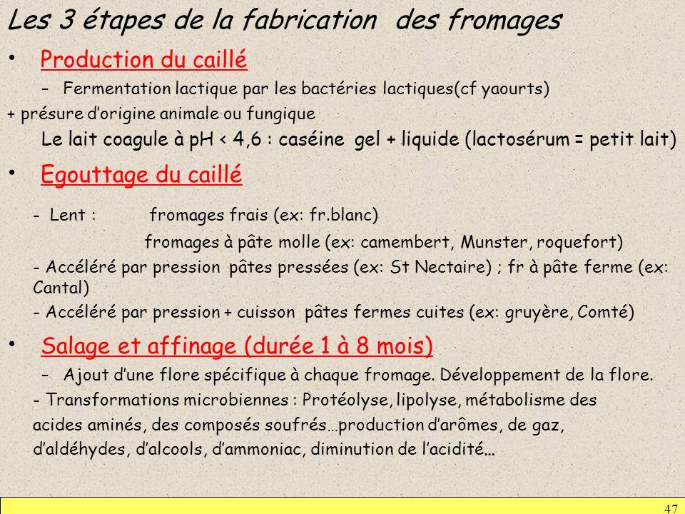 Les 3 étapes de la fabrication des fromages Production du caillé
