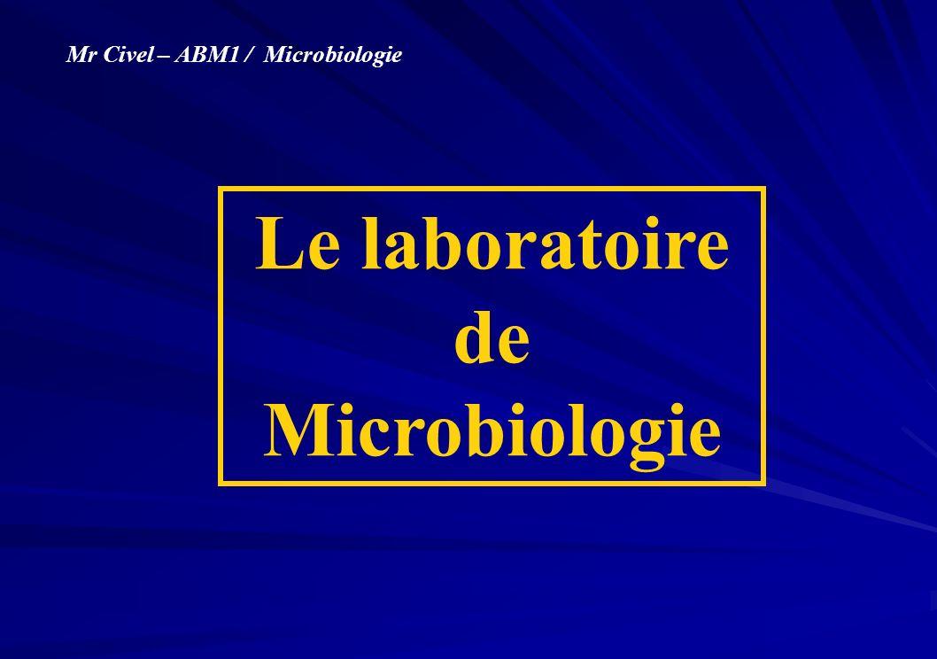 Le laboratoire de Microbiologie