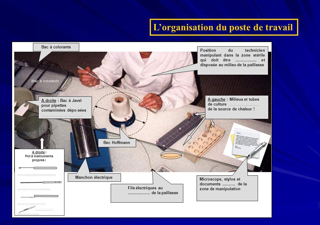 L'organisation du poste de travail