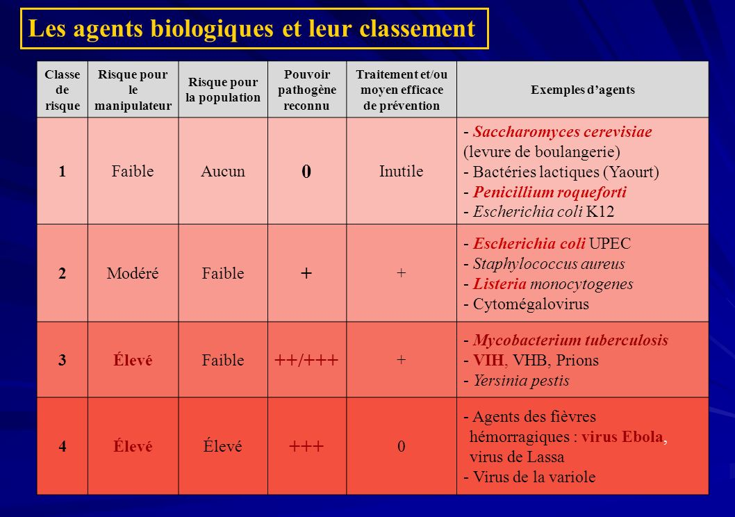 Les agents biologiques et leur classement