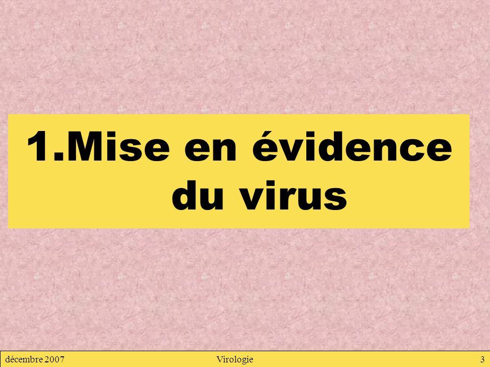 Mise en évidence du virus