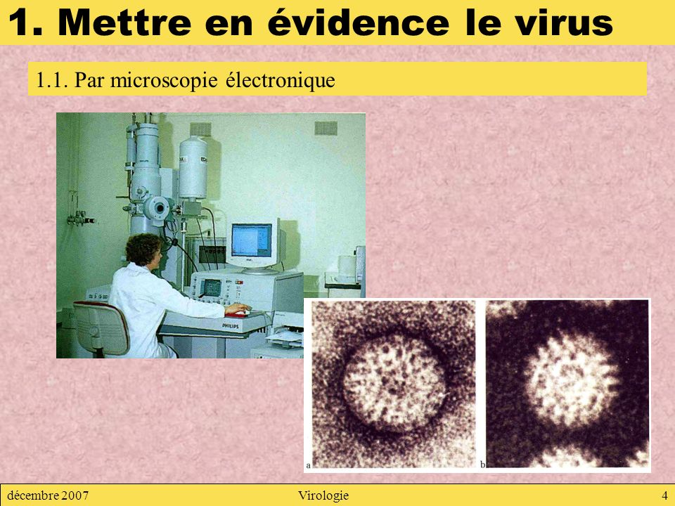 1. Mettre en évidence le virus