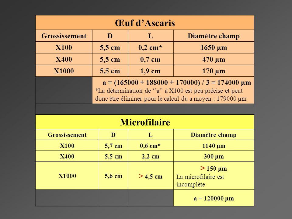 Œuf d'Ascaris Microfilaire
