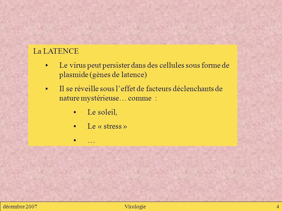 La LATENCE Le virus peut persister dans des cellules sous forme de plasmide (gènes de latence)