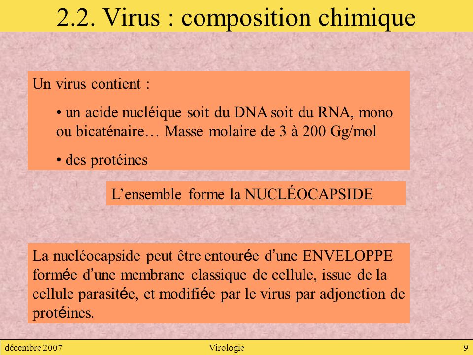 2.2. Virus : composition chimique