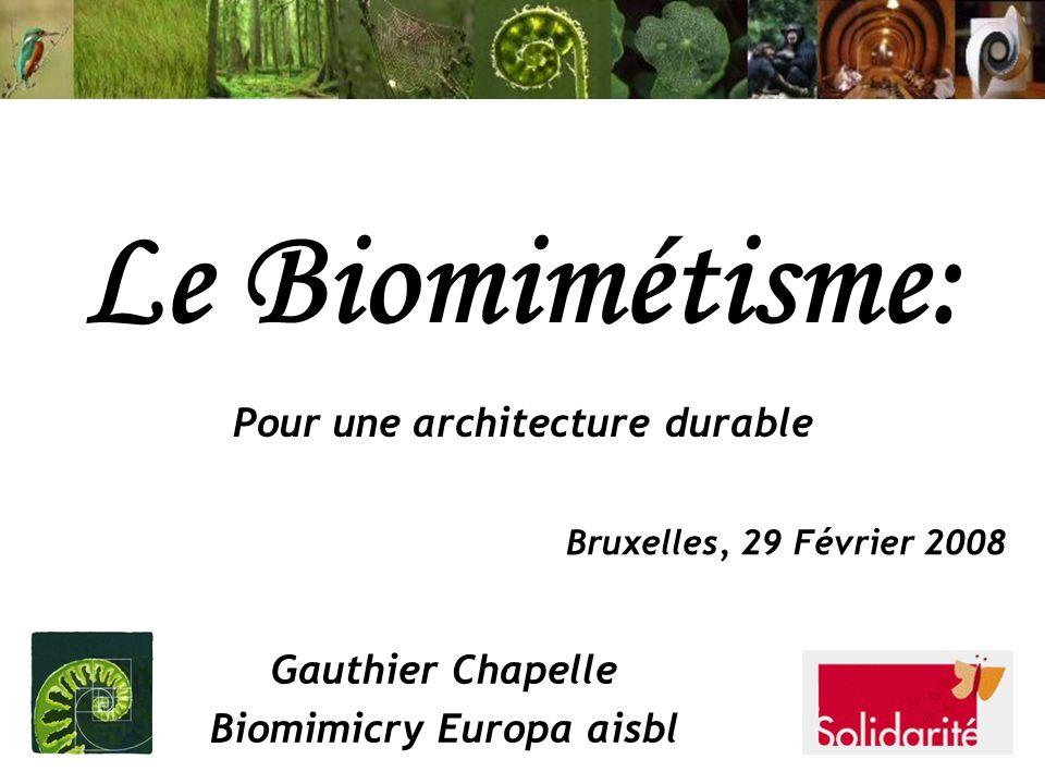 Pour une architecture durable Biomimicry Europa aisbl