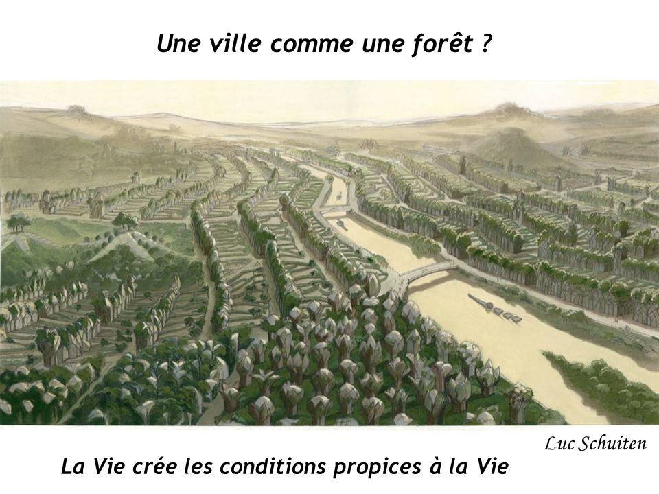 Une ville comme une forêt