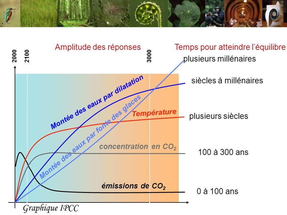 Graphique IPCC Amplitude des réponses Temps pour atteindre l'équilibre