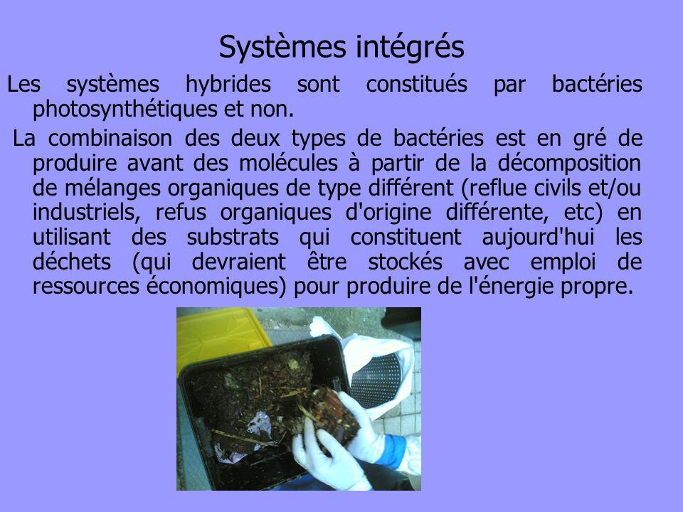 Systèmes intégrésLes systèmes hybrides sont constitués par bactéries photosynthétiques et non.