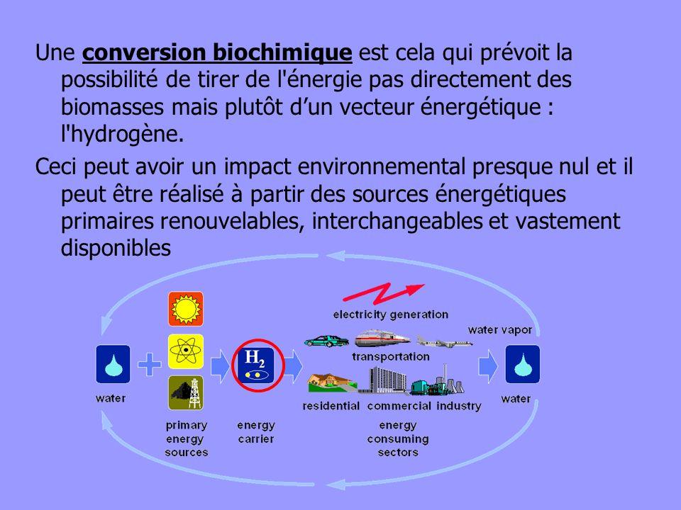 Une conversion biochimique est cela qui prévoit la possibilité de tirer de l énergie pas directement des biomasses mais plutôt d'un vecteur énergétique : l hydrogène.