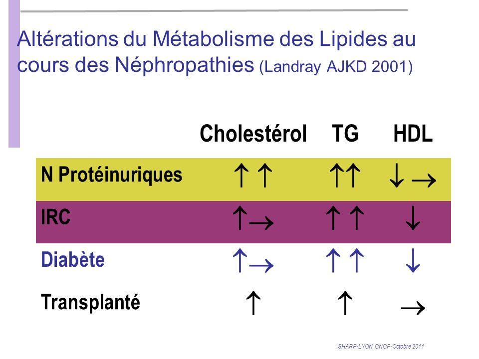         Cholestérol TG HDL