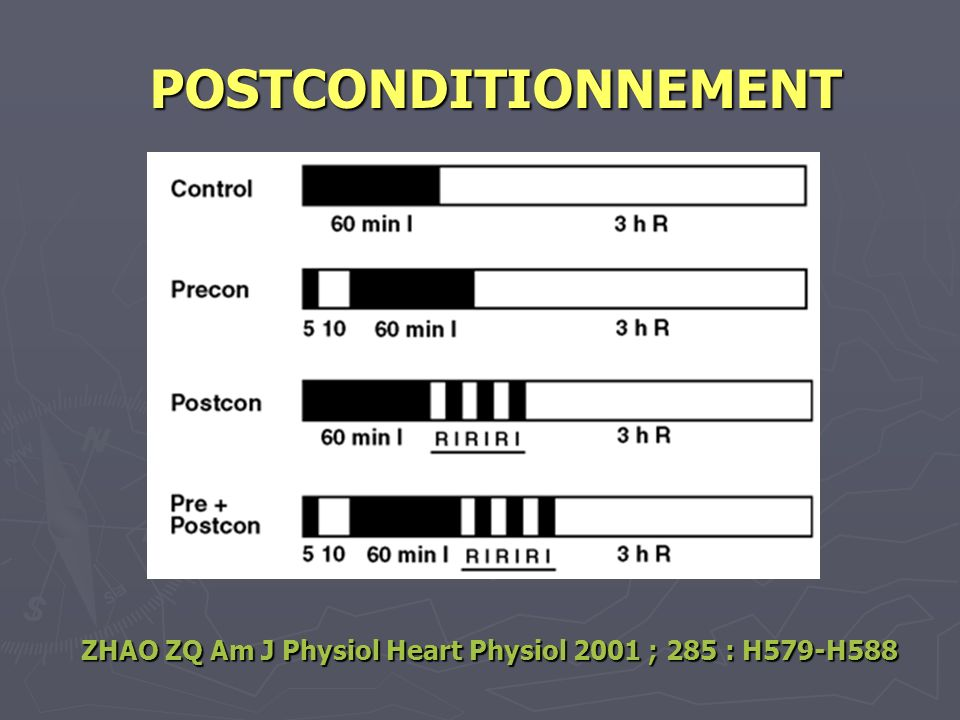 POSTCONDITIONNEMENT ZHAO ZQ Am J Physiol Heart Physiol 2001 ; 285 : H579-H588