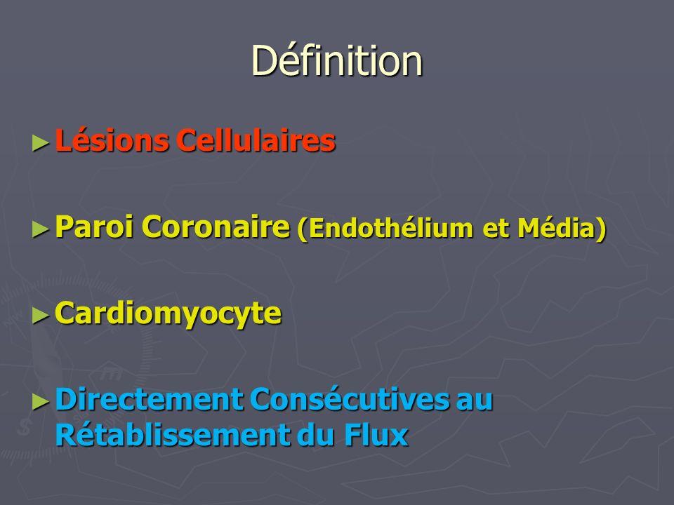 Définition Lésions Cellulaires Paroi Coronaire (Endothélium et Média)
