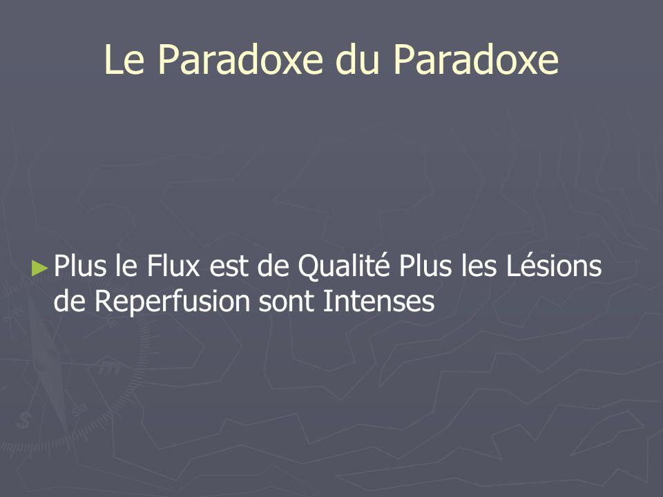 Le Paradoxe du Paradoxe