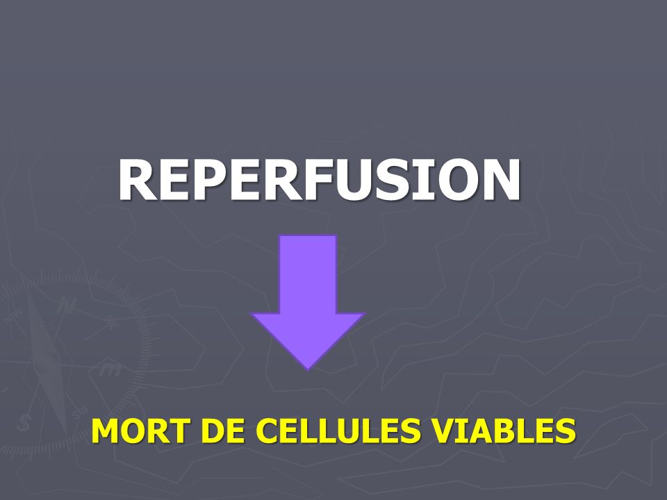 REPERFUSION MORT DE CELLULES VIABLES