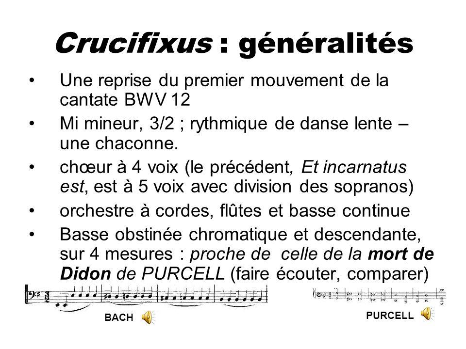Crucifixus : généralités