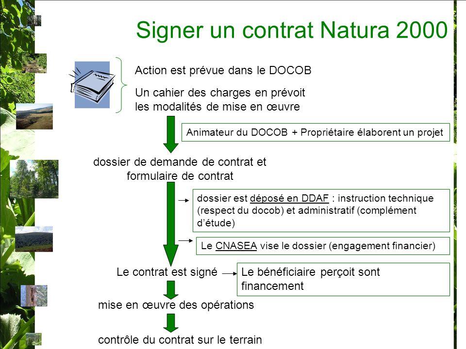 dossier de demande de contrat et formulaire de contrat