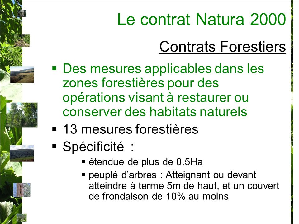 Le contrat Natura 2000 Contrats Forestiers