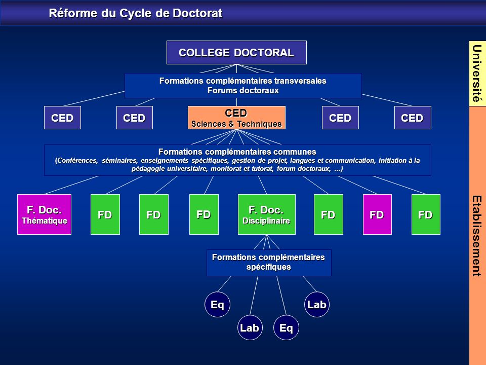 Réforme du Cycle de Doctorat Université Etablissement