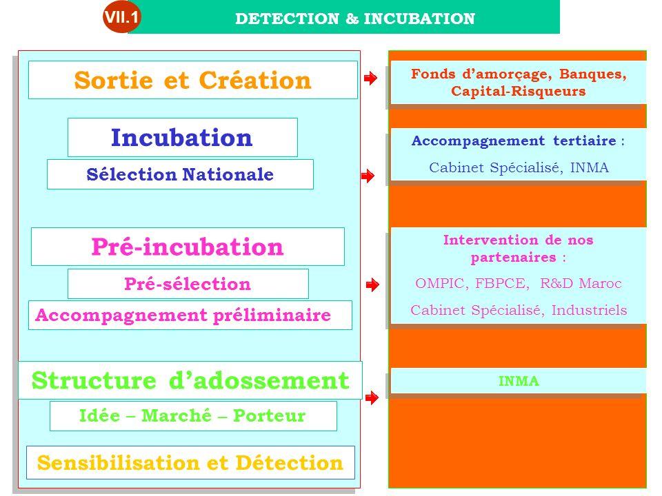 Sortie et Création Incubation Pré-incubation Structure d'adossement