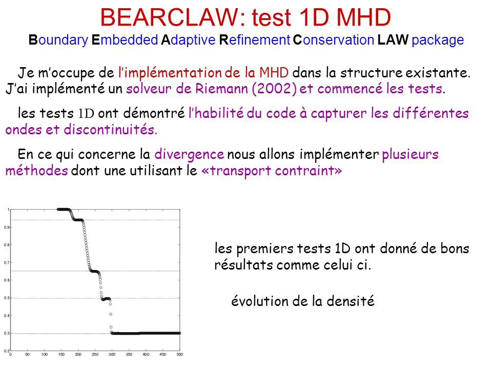 BEARCLAW: test 1D MHD Boundary Embedded Adaptive Refinement Conservation LAW package