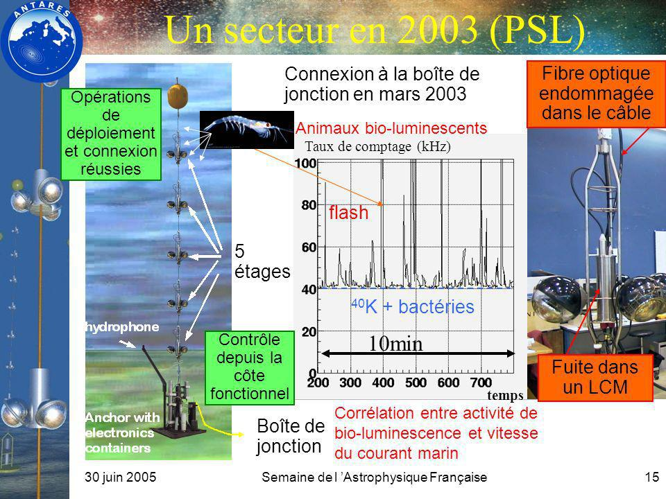 Un secteur en 2003 (PSL) Connexion à la boîte de jonction en mars 2003. Fuite dans un LCM. Fibre optique endommagée dans le câble.