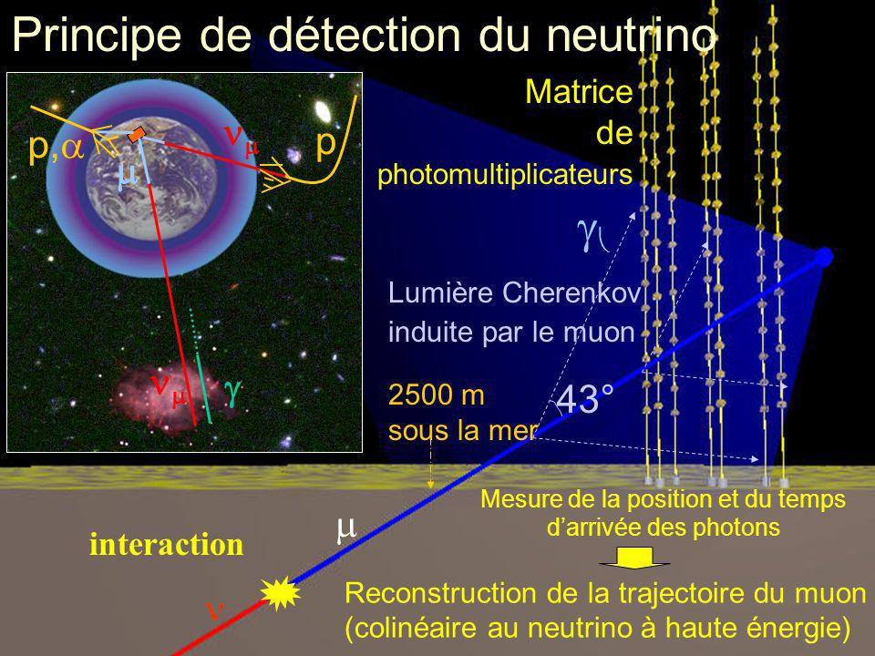 Principe de détection du neutrino ANTARES detection principle