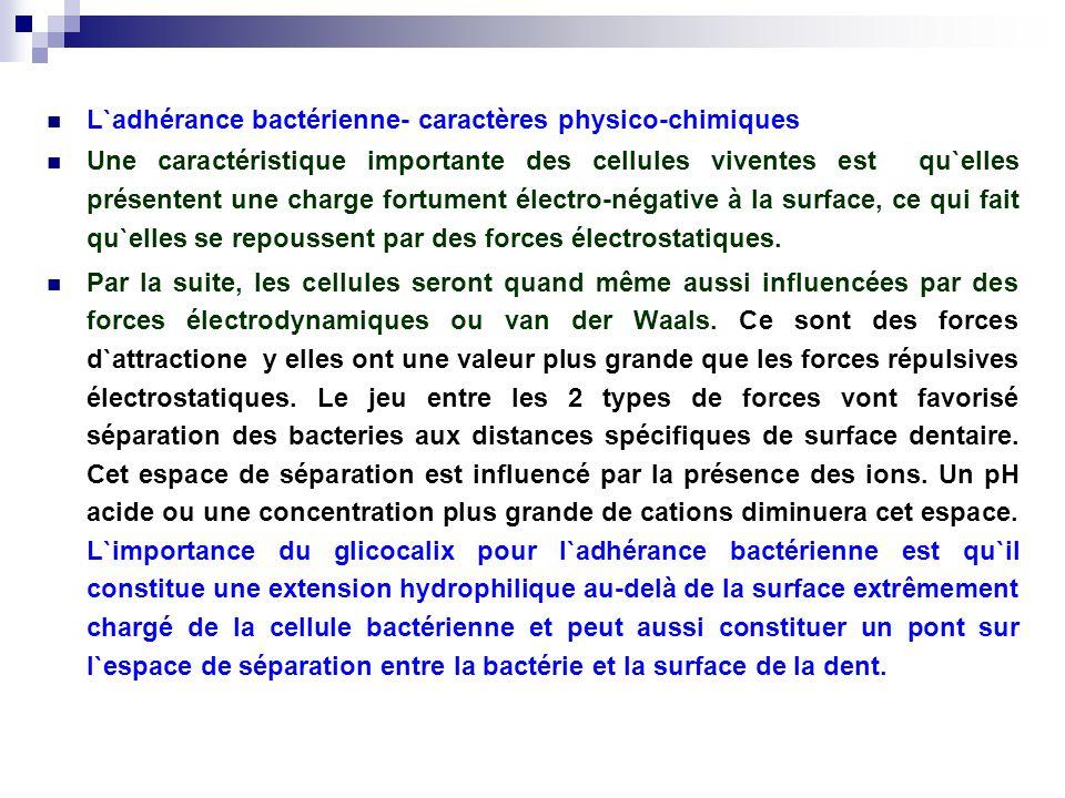 L`adhérance bactérienne- caractères physico-chimiques