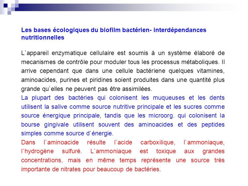 Les bases écologiques du biofilm bactérien- interdépendances nutritionnelles