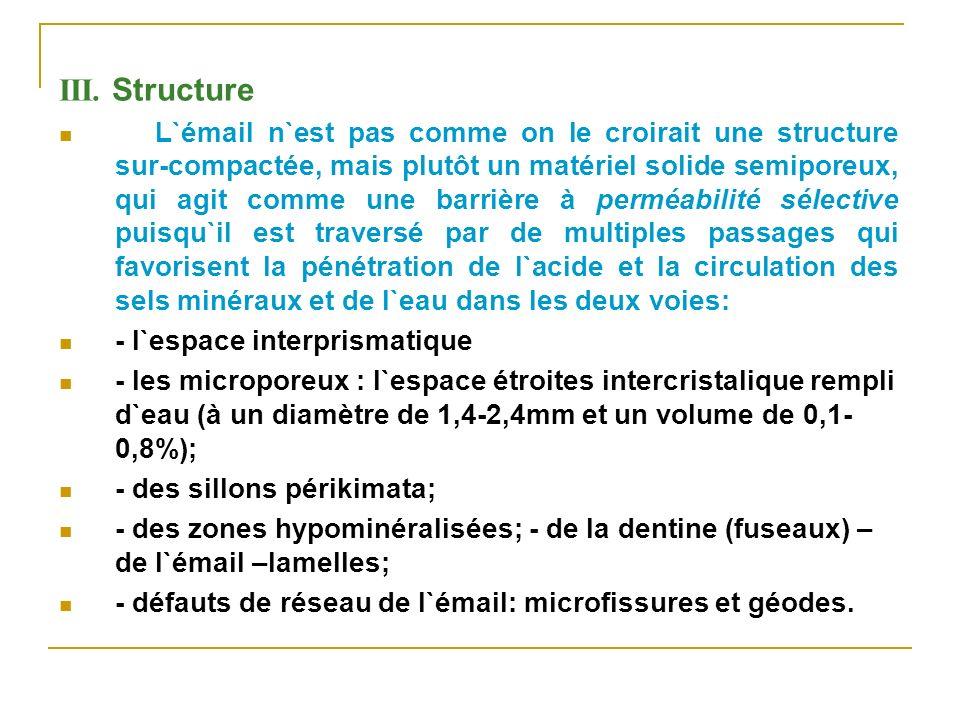 III. Structure