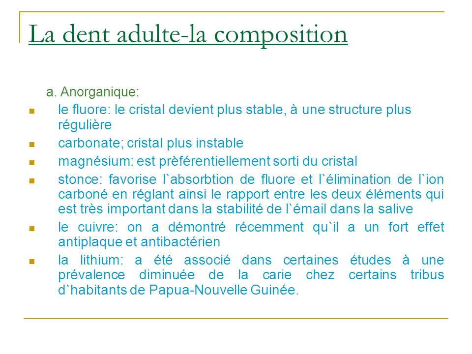La dent adulte-la composition
