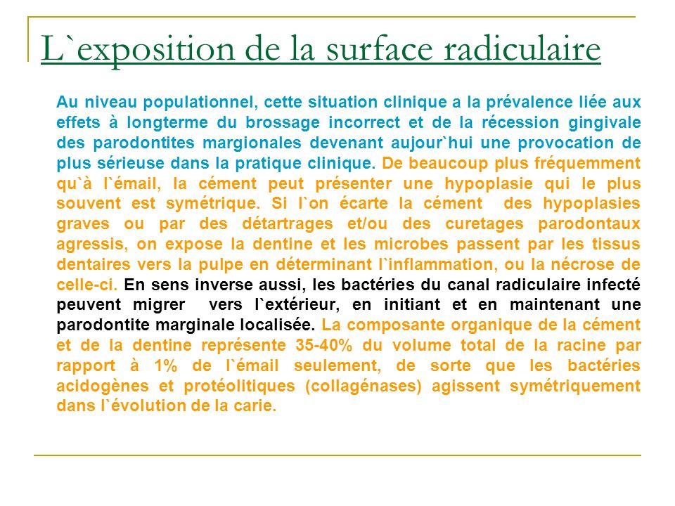 L`exposition de la surface radiculaire