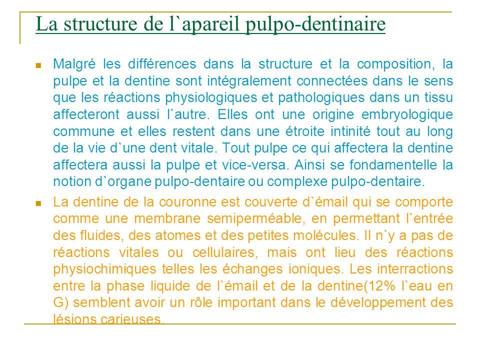 La structure de l`apareil pulpo-dentinaire