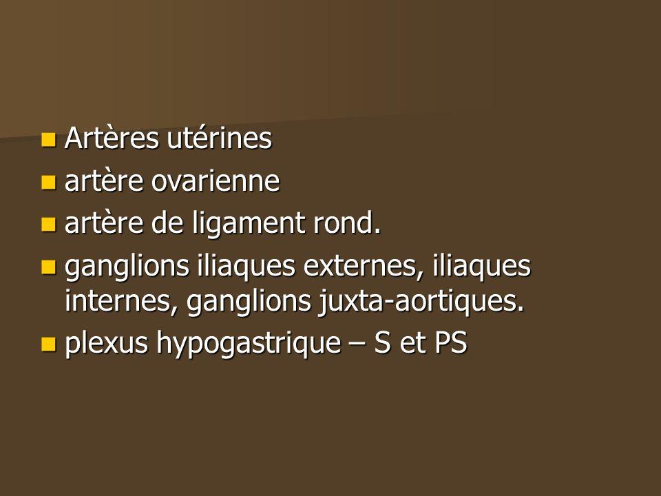 Artères utérines artère ovarienne. artère de ligament rond. ganglions iliaques externes, iliaques internes, ganglions juxta-aortiques.