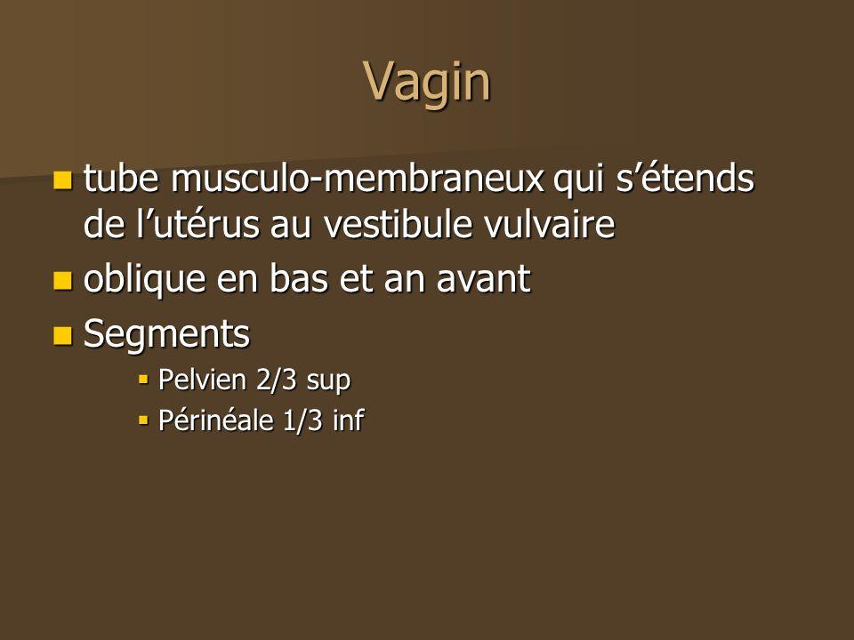 Vagintube musculo-membraneux qui s'étends de l'utérus au vestibule vulvaire. oblique en bas et an avant.