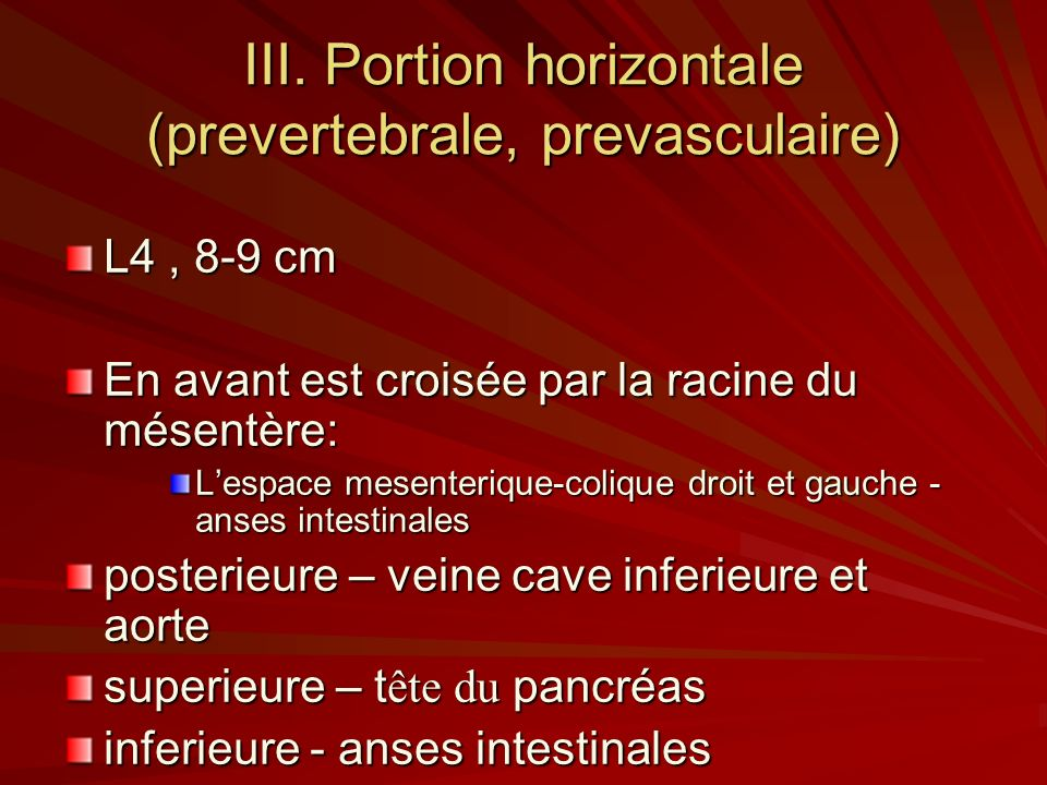 III. Portion horizontale (prevertebrale, prevasculaire)