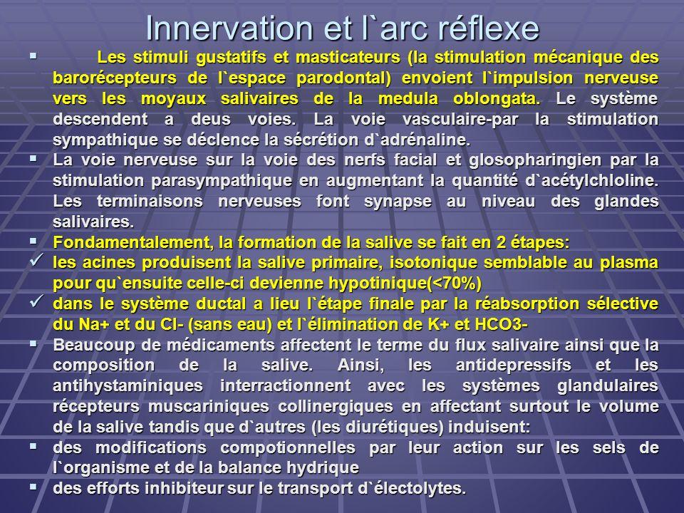 Innervation et l`arc réflexe