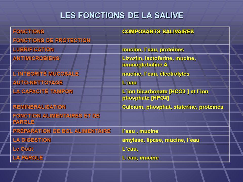 LES FONCTIONS DE LA SALIVE